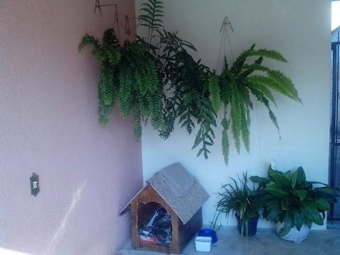 Sobrado à Venda - Jardim Ermida II