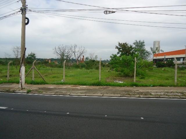 Terreno à Venda - Jardim Yeda