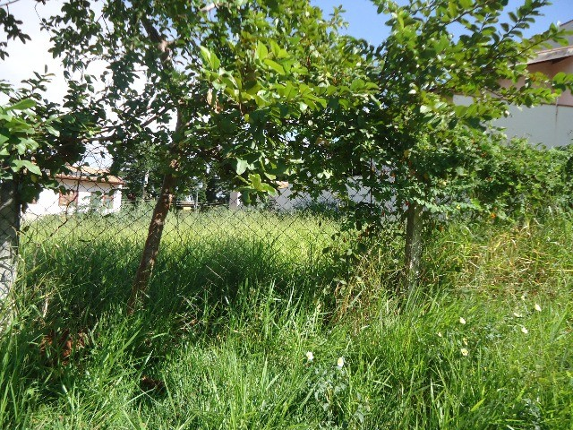 Terreno à Venda - Jardim das Paineiras