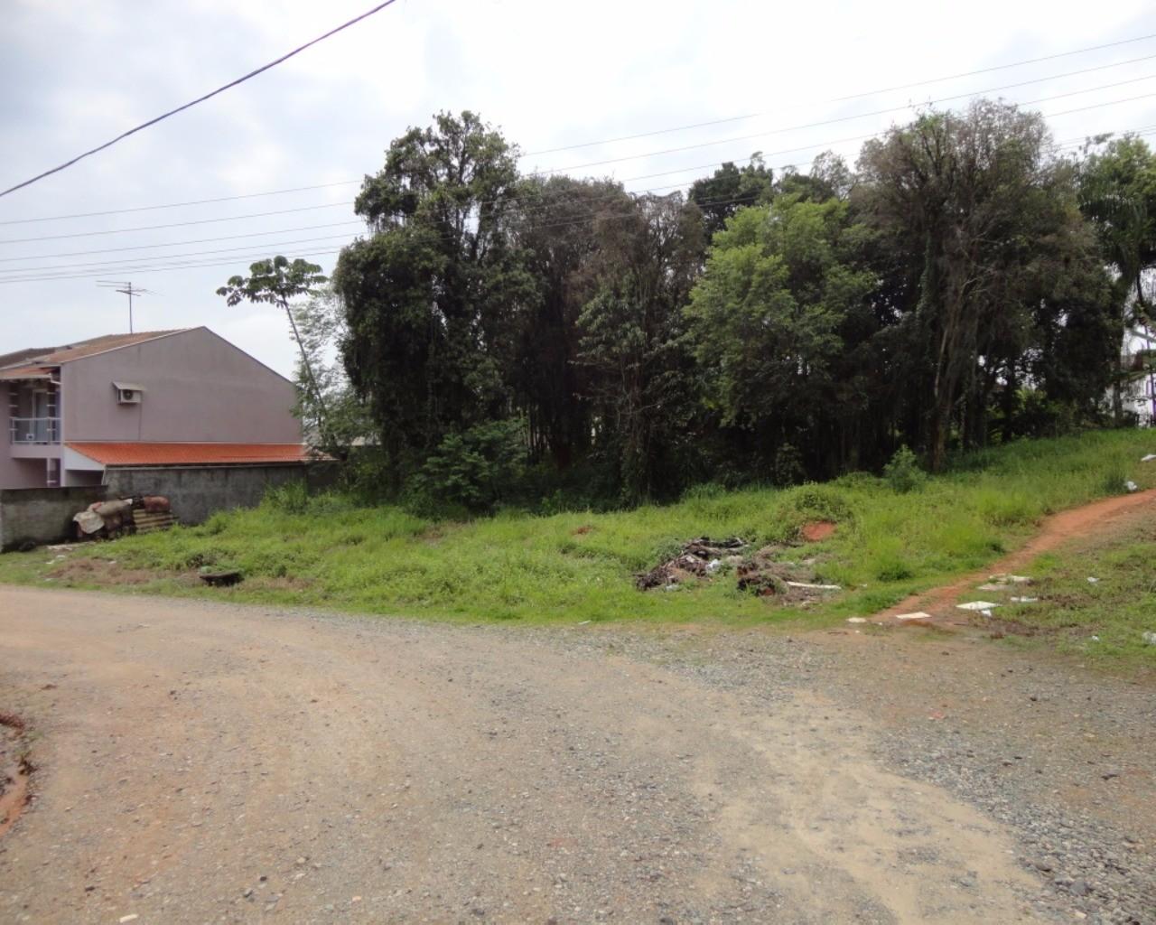 comprar ou alugar terreno no bairro joão costa na cidade de joinville-sc