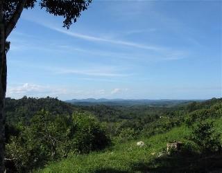 comprar ou alugar fazenda no bairro zona do barrocão na cidade de itacaré-ba