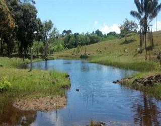 comprar ou alugar fazenda no bairro serra grande na cidade de uruçuca-ba