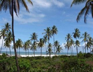 comprar ou alugar area de praia frente ao mar no bairro serra grande na cidade de uruçuca-ba