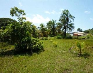 comprar ou alugar terreno em condomínio no bairro serra grande na cidade de uruçuca-ba