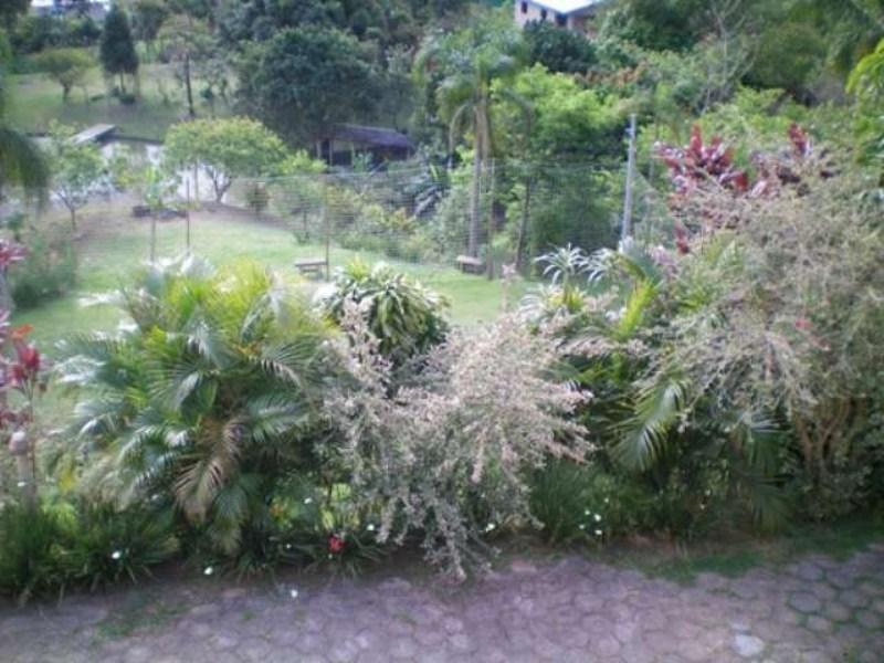 vista janela sala para campinh