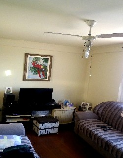 comprar ou alugar apartamento no bairro vila união na cidade de campinas-sp