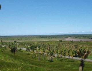 comprar ou alugar fazenda no bairro centro na cidade de ilhéus-ba