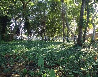 Comprar, terreno no bairro centro na cidade de arraial d'ajuda-ba