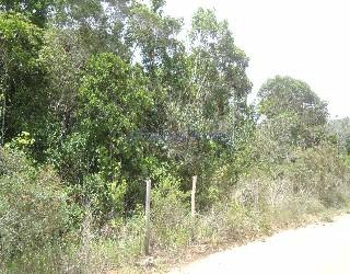Comprar, terreno no bairro alto do villas na cidade de arraial d'ajuda-ba