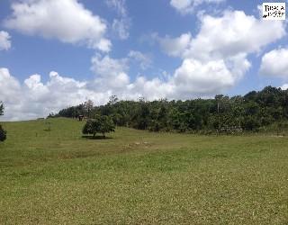 comprar ou alugar fazenda no bairro zona rural na cidade de itanagra-ba