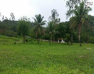 comprar ou alugar fazenda no bairro zona rural na cidade de araçás-ba