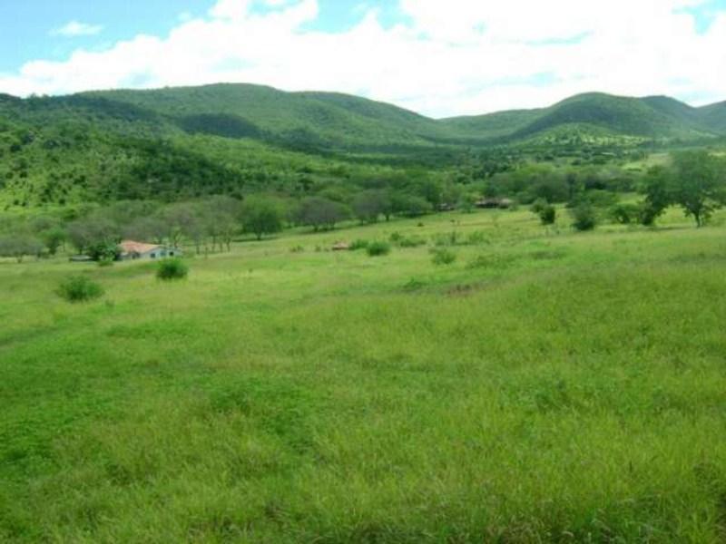 comprar ou alugar fazenda no bairro zona rural na cidade de jequié-ba