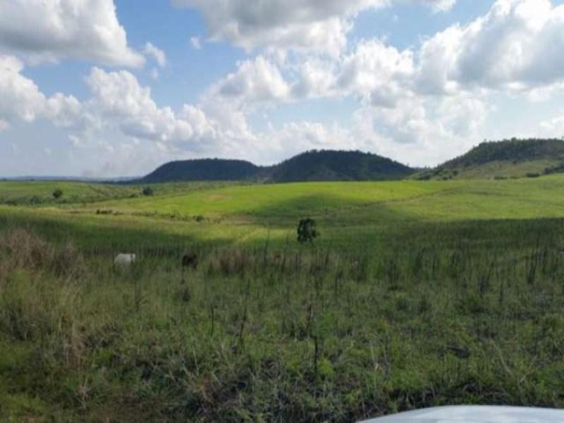 comprar ou alugar fazenda no bairro zona rural na cidade de terra nova-ba