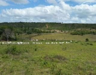 comprar ou alugar fazenda no bairro zona arural na cidade de entre rios-ba