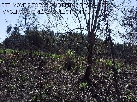 TE00056 - Zona Rural, Mairinque - SP