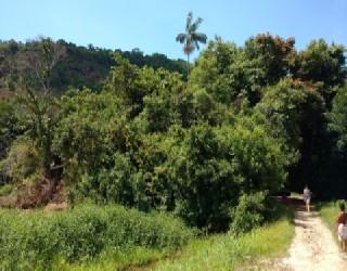 Comprar, terreno no bairro tabatinga na cidade de caraguatatuba-sp