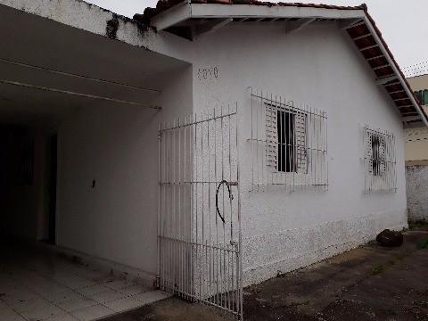 Foto 19
