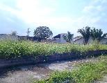 Comprar, area no bairro jardim britania na cidade de caraguatatuba-sp