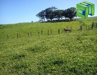 comprar ou alugar fazenda no bairro fazenda região de franca na cidade de franca-sp