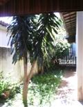 comprar ou alugar casa no bairro jardim miranda na cidade de campinas-sp