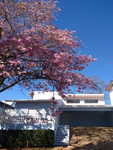 comprar ou alugar casa no bairro gramado na cidade de campinas-sp